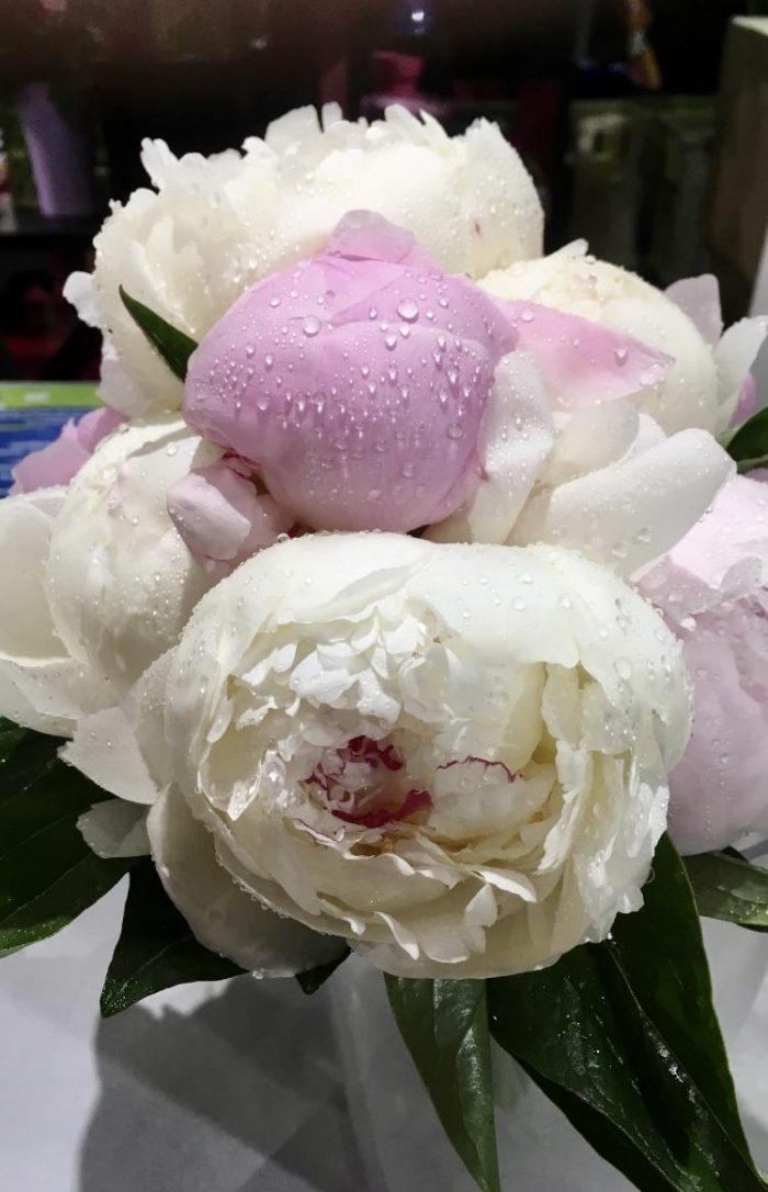 bouquet mariage rose et blanc fleuriste Saint Cloud le Chapelin Fretz