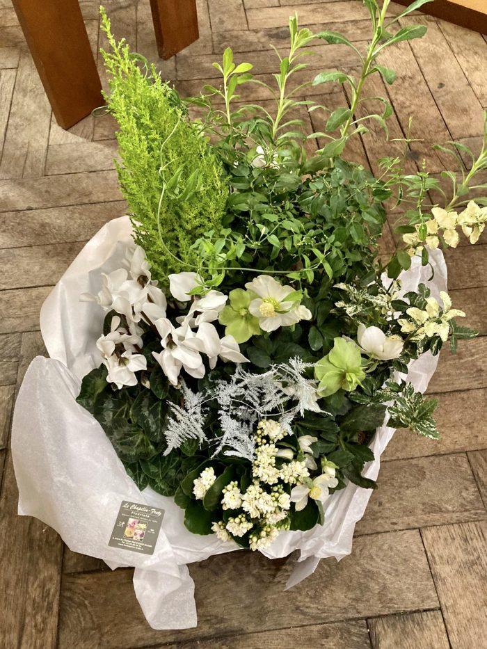 plantes extérieures deuil fleuriste Saint Cloud le Chapelin Fretz
